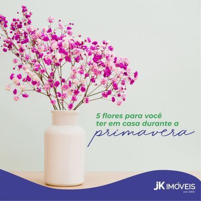 Flores para sua casa