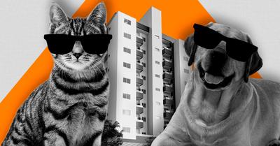 O condomínio pode proibir animais de estimação?