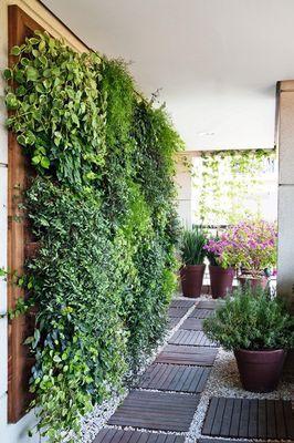 Dicas de como montar uma parede verde que dê pouca manutenção!