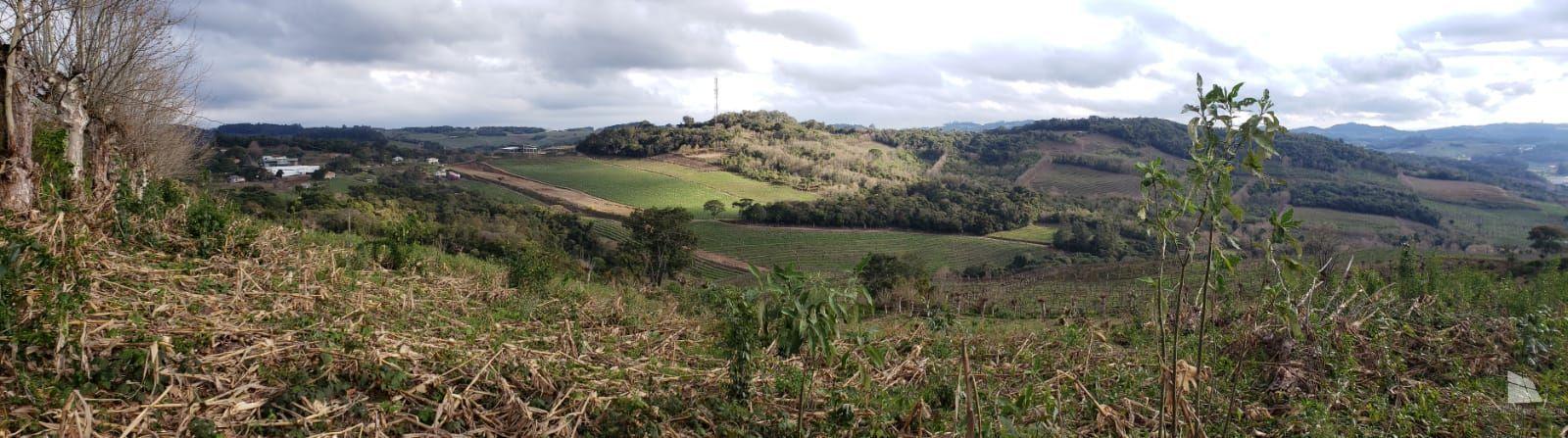 Terreno comercial à venda  no Vale dos Vinhedos - Bento Gonçalves, RS. Imóveis