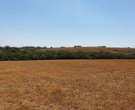 area-rural-sao-gabriel-imagem