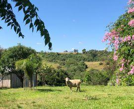 chacara-vila-nova-do-sul-imagem