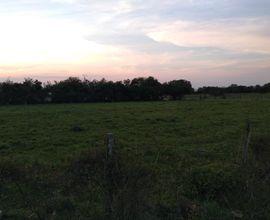 campo-alegrete-imagem