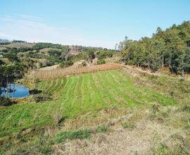 area-rural-pinto-bandeira-imagem