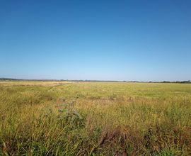fazenda-sao-gabriel-imagem