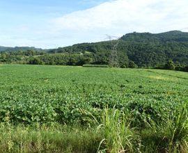 area-rural-nenhum-imagem