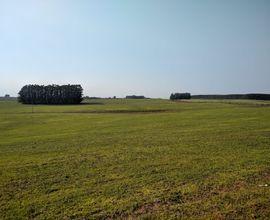 fazenda-vila-nova-do-sul-imagem