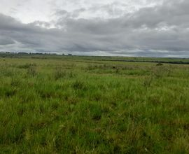 area-rural-alegrete-imagem