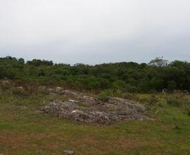 area-rural-vila-nova-do-sul-imagem