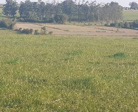 area-rural-restinga-seca-imagem