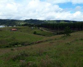 terreno-sao-francisco-de-paula-imagem