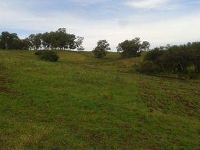 campo-lavras-do-sul-imagem
