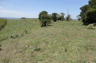 campo-santana-da-boa-vista-imagem