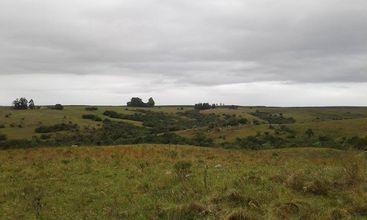 campo-sao-gabriel-imagem