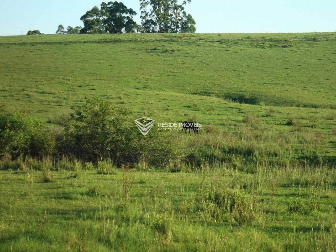 Terreno comercial à venda  no Nenhum - Santa Maria, RS. Imóveis