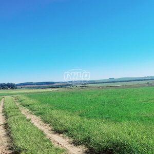 Área 1028 hectares para cultivo de Soja.