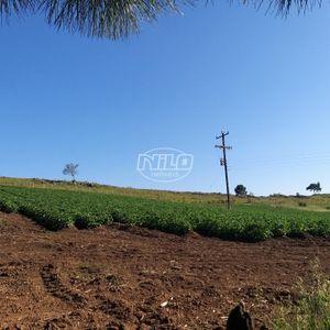 Área de agricultura e pecuária em Bom Jesus - RS