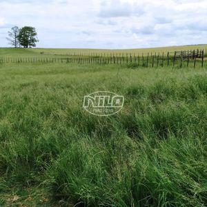 Fazenda de 500 hectares com sede completa para agricultura!!