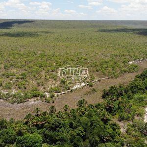 500 hectares em Barra - BA