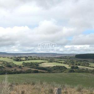 349 hectares em Herval