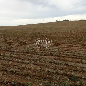 859 hectares de terras férteis, solo vermelho, alta produtividade...Soja, milho...!