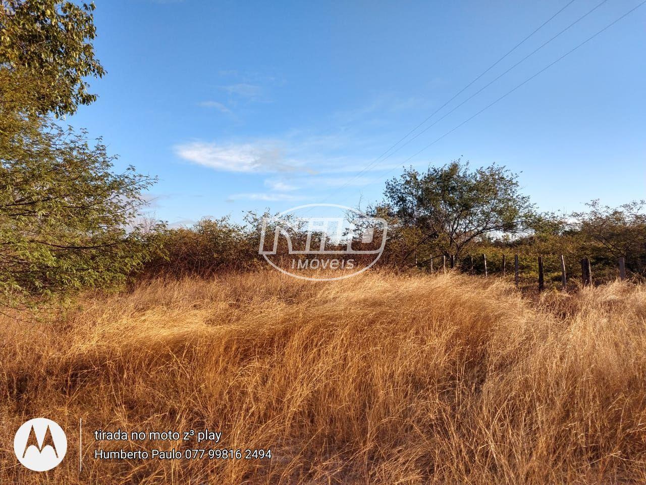 4.122 hectares em Muquém do São Francisco
