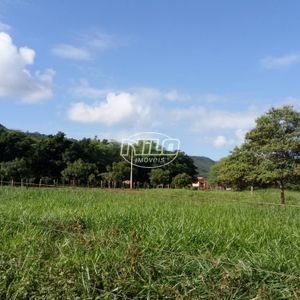 782 hectares em Wanderley