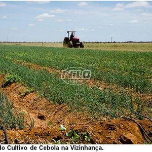 19552 hectares em Pilão Arcado
