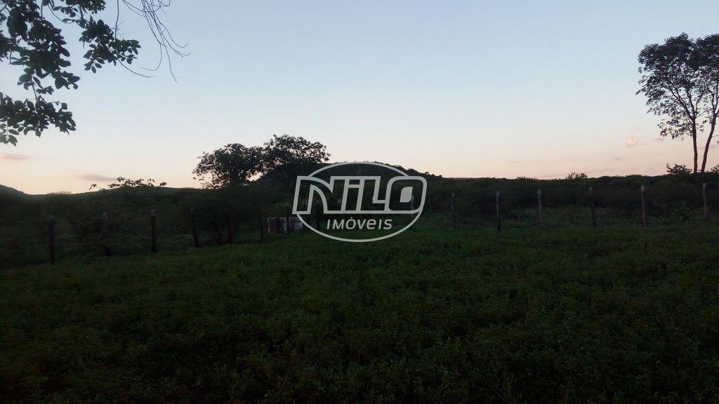 500 hectares em Ibotirama