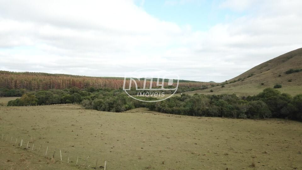 950 hectares à venda