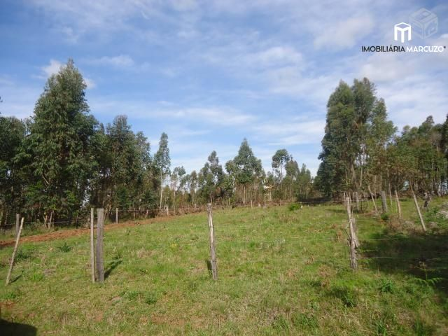 Terreno/Lote à venda, 1.000 m² por R$ 40.000,00