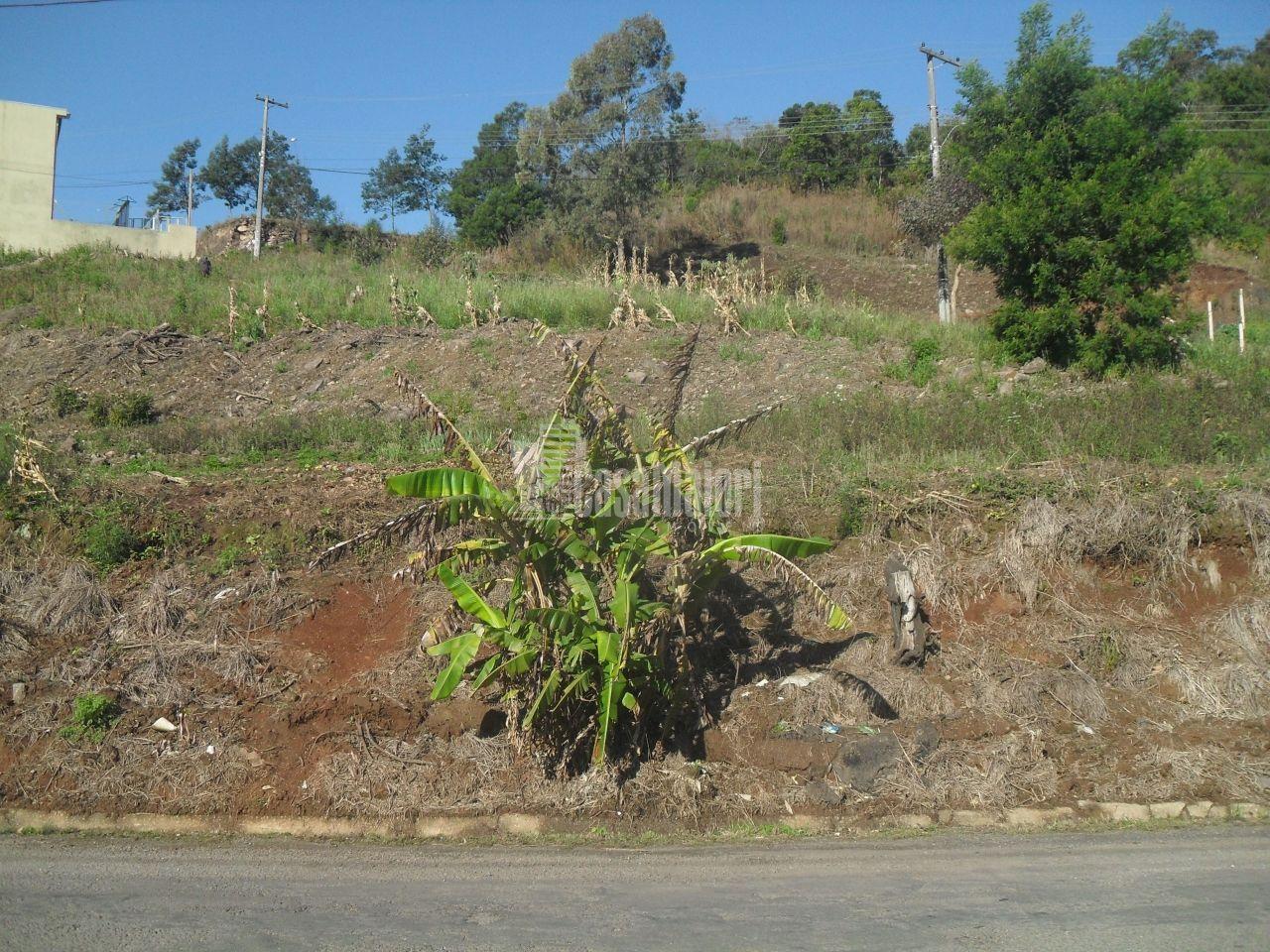 Terreno/Lote à venda  no São Roque - Bento Gonçalves, RS. Imóveis