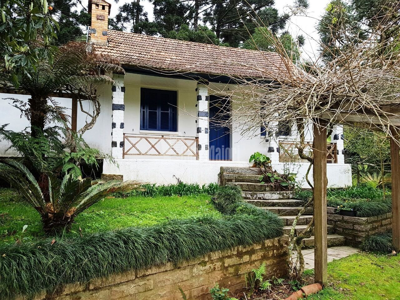 Fazenda/sítio/chácara/haras à venda  no São Pedro - Bento Gonçalves, RS. Imóveis