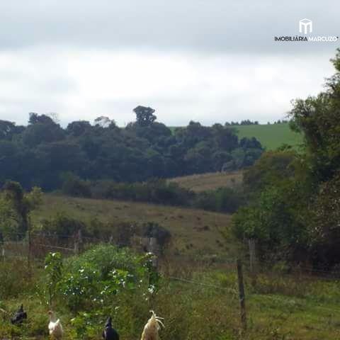 Fazenda/sítio/chácara/haras com 2 Dormitórios à venda, 3.500 m² por R$ 176.000,00