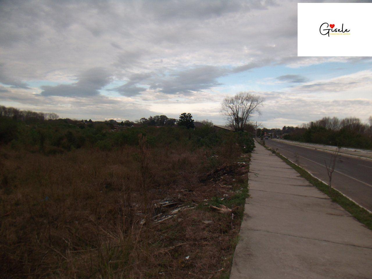 Terreno/Lote à venda, 29.516 m² por R$ 4.772.500,00