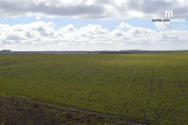Terreno comercial com 2 Dormitórios à venda, 146.000 m² por R$ 3.650.000,00