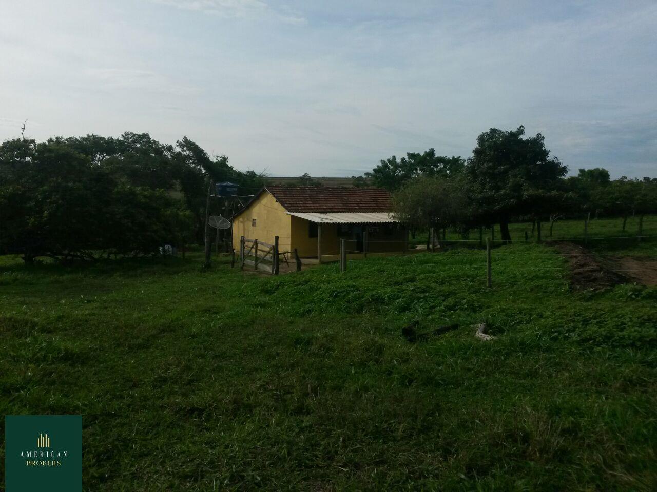 Fazenda/sítio/chácara/haras à venda  no Nenhum - Ipameri, GO. Imóveis