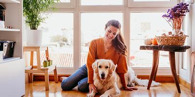 5 dicas para quem tem PET dentro de casa