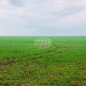 675 hectares em São Borja