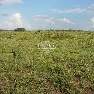 400 hectares em Mato Grosso, Canarana.
