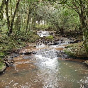 Sítio em Rio Grande do Sul, Ibiraiaras.