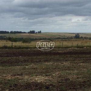 245 hectares em Alegrete