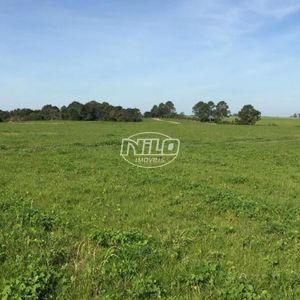 380 hectares em São Sepé