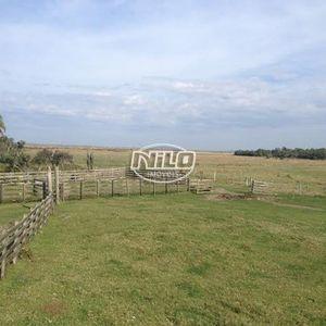 1.805 hectares em Rio Grande