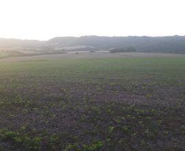 area-rural-sao-martinho-imagem