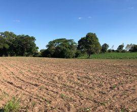 campo-restinga-seca-imagem