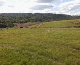 fazenda-santana-da-boa-vista-imagem