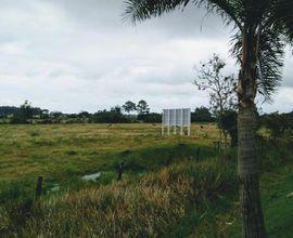 area-rural-paraiso-do-sul-imagem