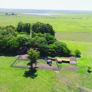 590 ha - Fazenda para pecuária