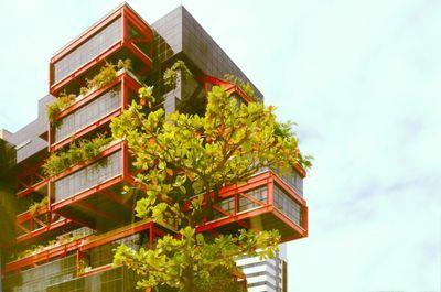 O que são Edifícios Verdes?